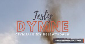 Read more about the article Testy dymne