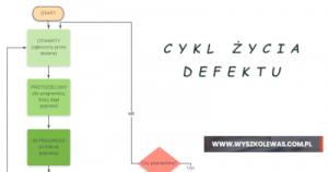 Cykl życia defektu