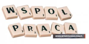 Read more about the article Współpraca między analitykiem i testerem