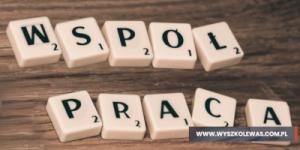 Read more about the article Współpraca testera z programistą